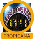 Tropicana, Bad mit 25m Schwimmbecken